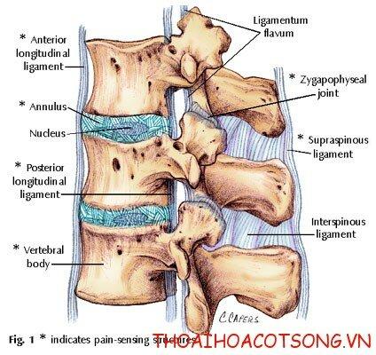 1 dieu tri benh thoat vi dia dem Thoát vị đĩa đệm. Nguyên nhân, triệu chứng và điều trị