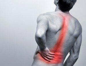 Đau lưng: Chứng vẹo cột sống, thoái hóa cột sống ở người lớn