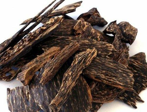 Trầm hương phát huy công dụng rất tốt trong các bài thuốc nam trị viêm đa khớp