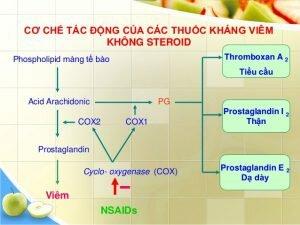 Thuốc thoái hóa cột sống chống viêm không steroid