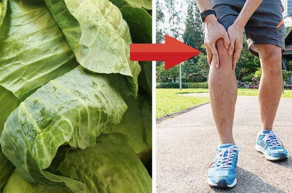 Bệnh thấp khớp đừng tốn tiền mua thuốc giảm đau: Đắp lá bắp cải lên chân khỏi lo cơn đau hoành hành