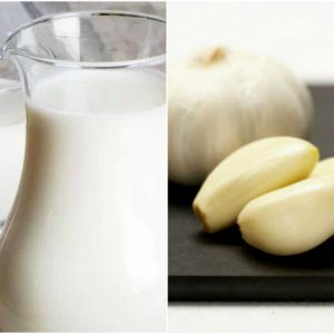 Sữa và tỏi kết hợp với nhau thành một vị thuốc có rất nhiều công dụng